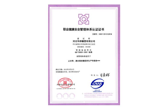 健康安全管理中文
